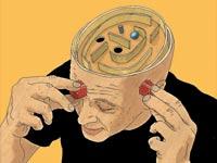 מוח / מאייר: יזהר כהן